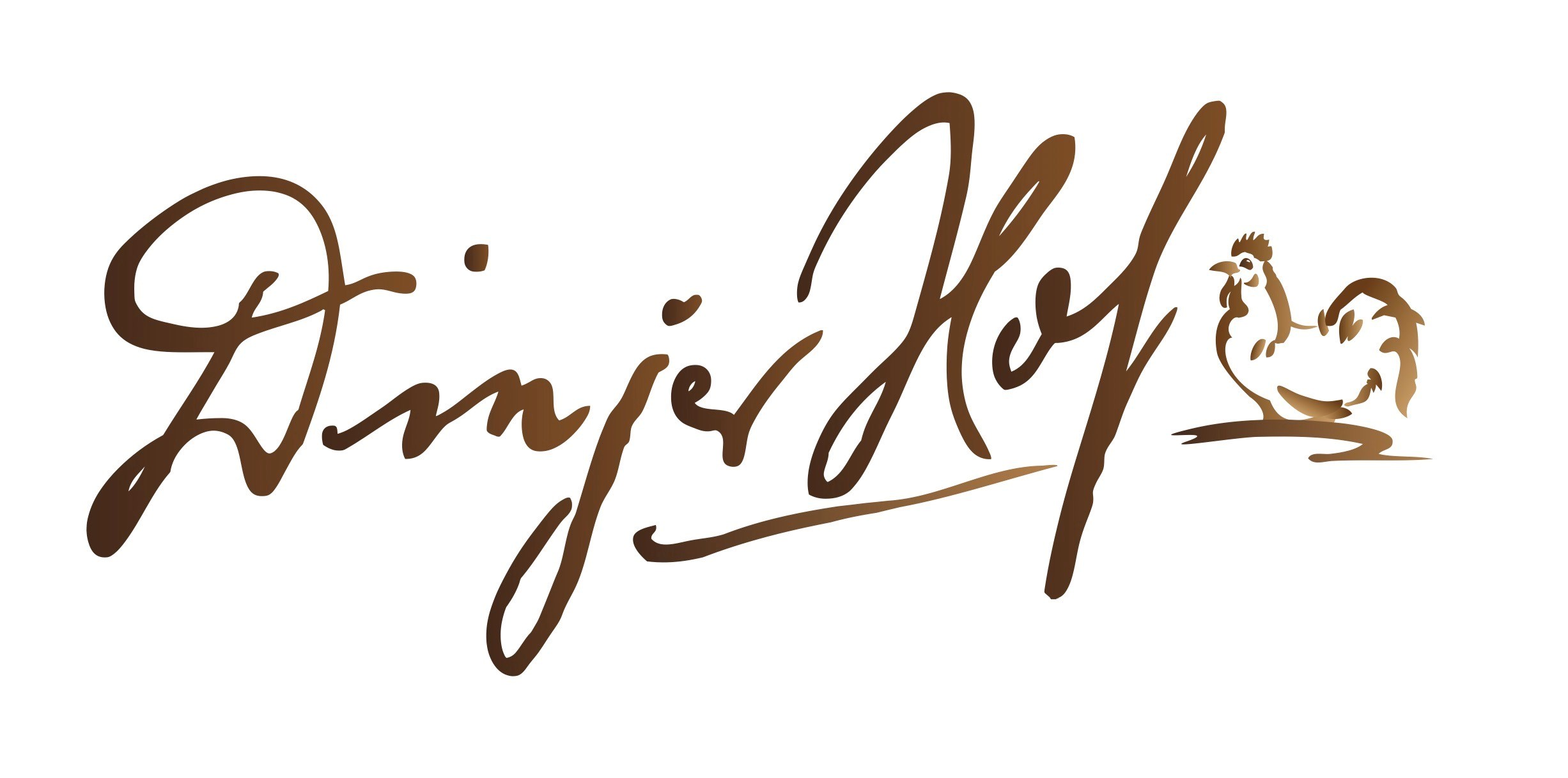 Logo Dinjer Hof